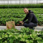 Maréchal Fraîcheur - Livraison de paniers de fruits et légumes frais et locaux - The Greener Guide